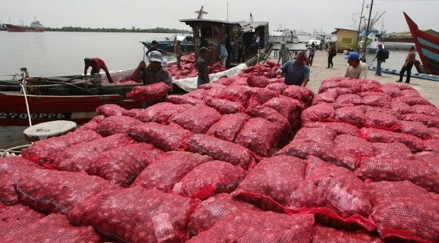 Bawang Merah Ilegal Masuk Pasar, DPR Desak Pemerintah Awasi