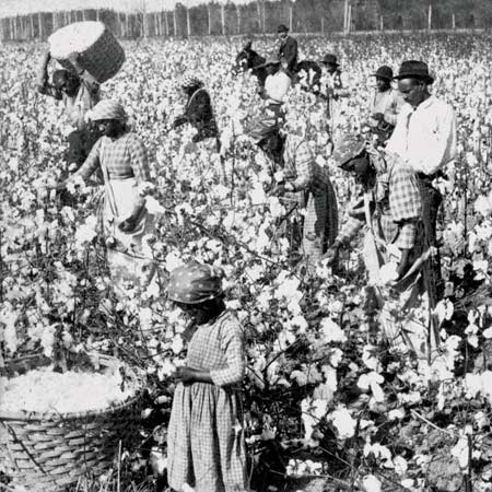 Those Who Can See: Reparations for Slavery?