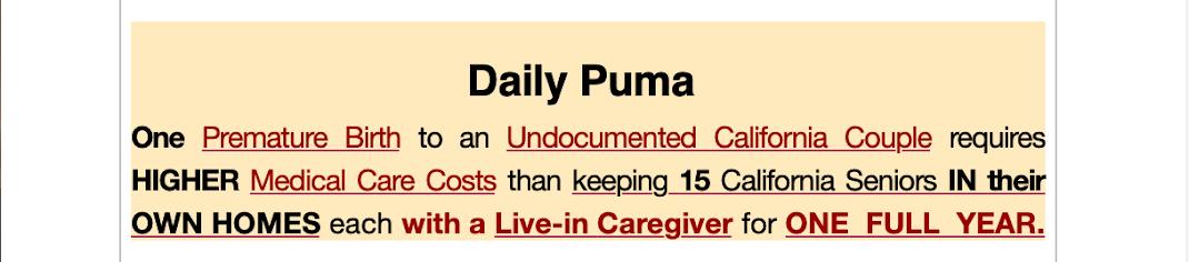 Daily PUMA