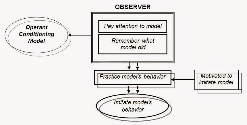 Model Operant conditioning (Operant Conditioning Model)