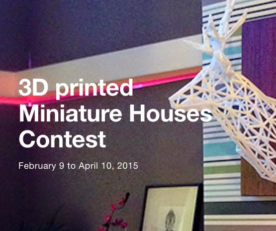 3D Printed Mini House Contest