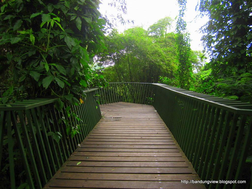 jembatan gantung babakan siliwangi 4