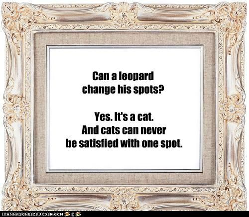 a leopard never changes its spots A leopard cannot change its spots since the leopard will not change his spots  but never his temper.