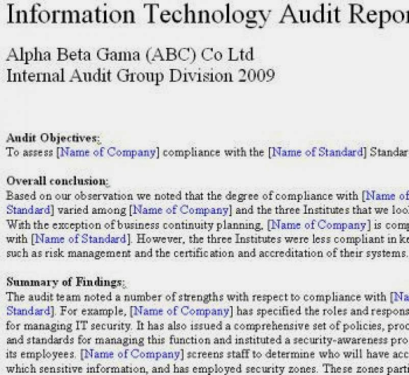 audit committee essay