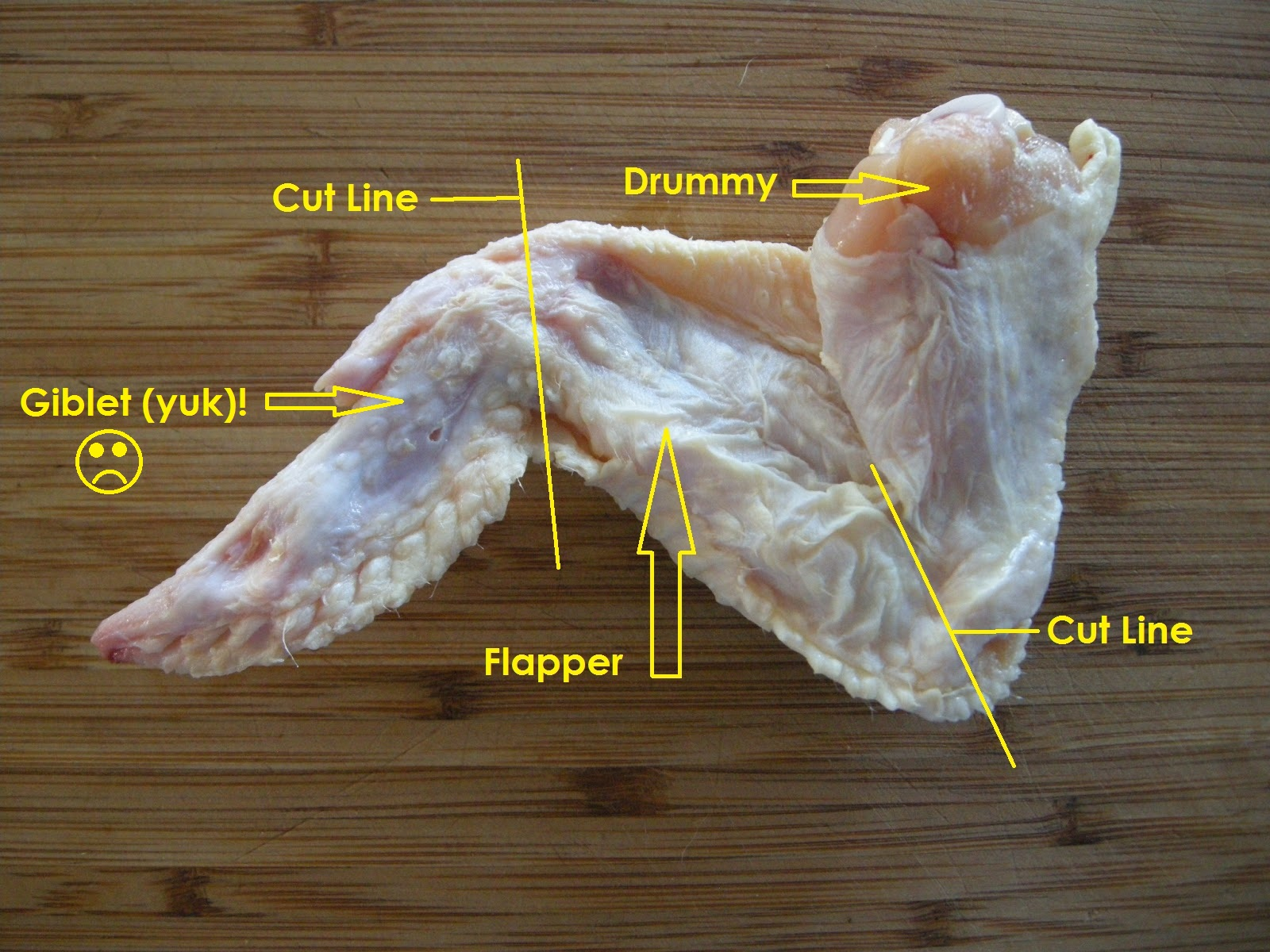 Anatomy of chicken wing