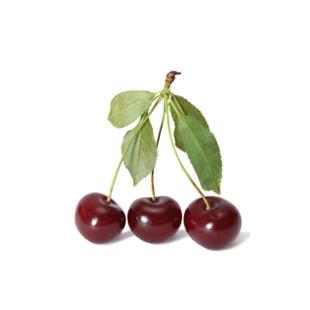 Organic Sour Cherry (Tart Cherry) Extract