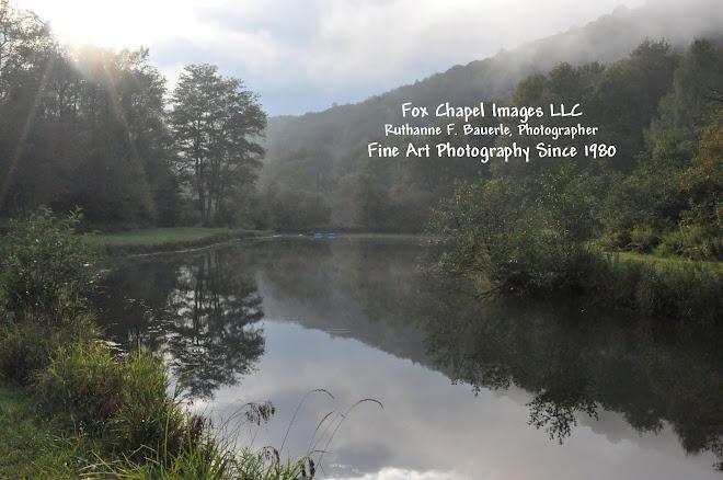 Fox Chapel Images LLC  Ruthanne F. Bauerle Photographer