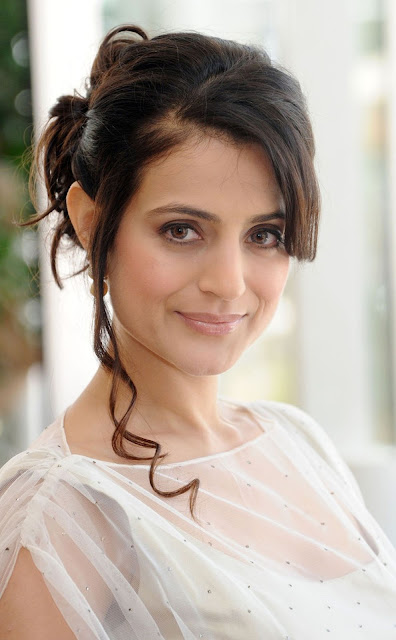 Ameesha Patel HD Wallpaper