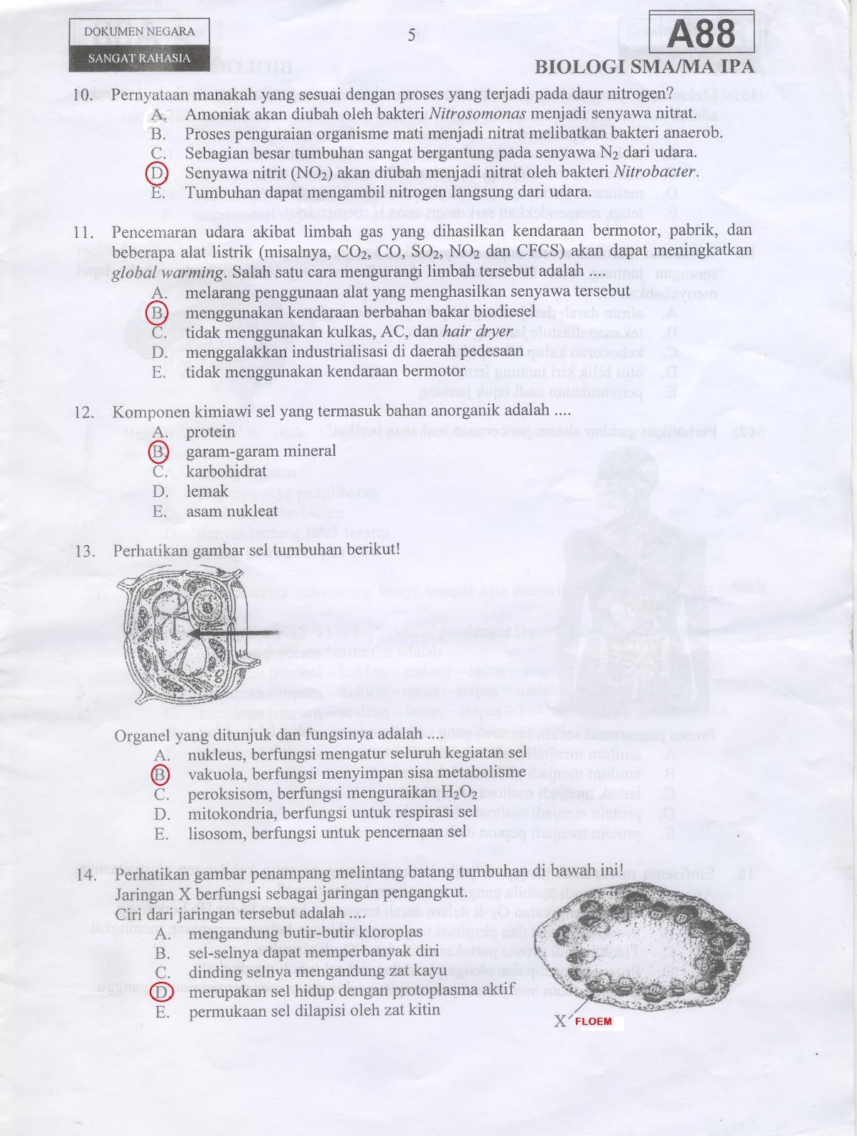 Prediksi Un Biologi 83 Inti Sari Biologi