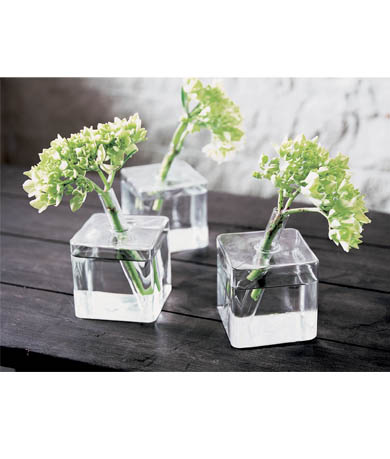 Adel live stylishly chic bud vases for Simple glass tubes