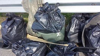 One of several piles from our adopt-a-highway pick up. We cleaned up 30 bags total!