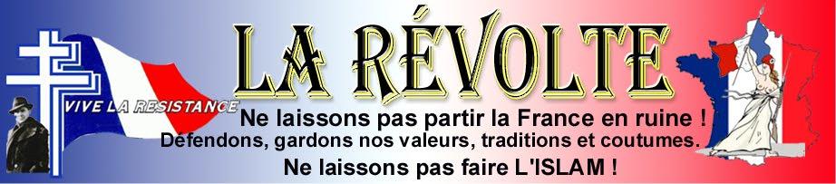 La Révolte des Français