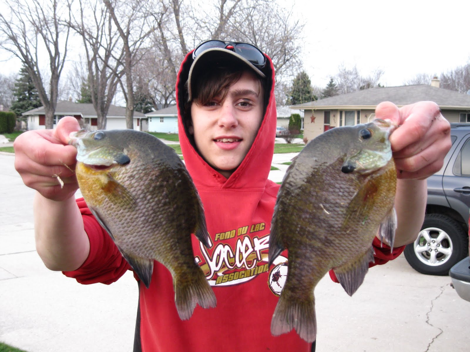 Bluegills on Lake Winnebago The Frugal Fisherman