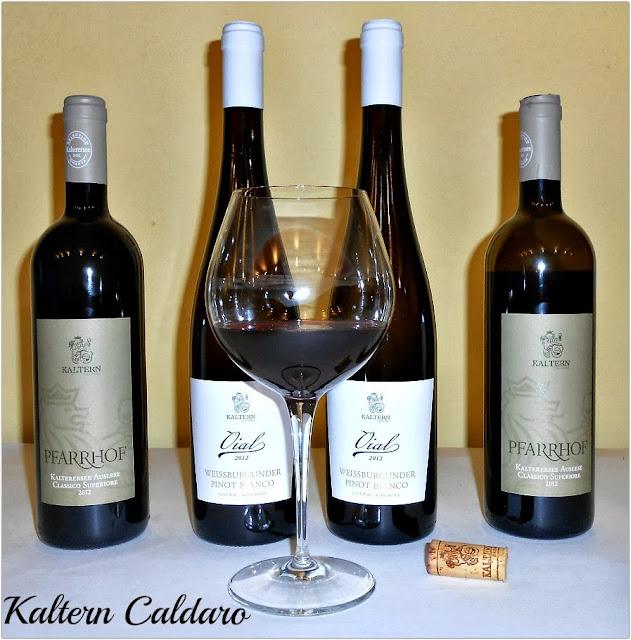 cantina di caldaro: la storia della cooperazione vitivinicola altoatesina
