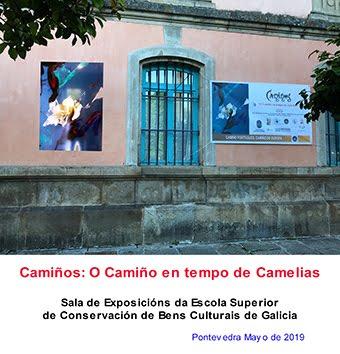 Exposición en Pontevedra