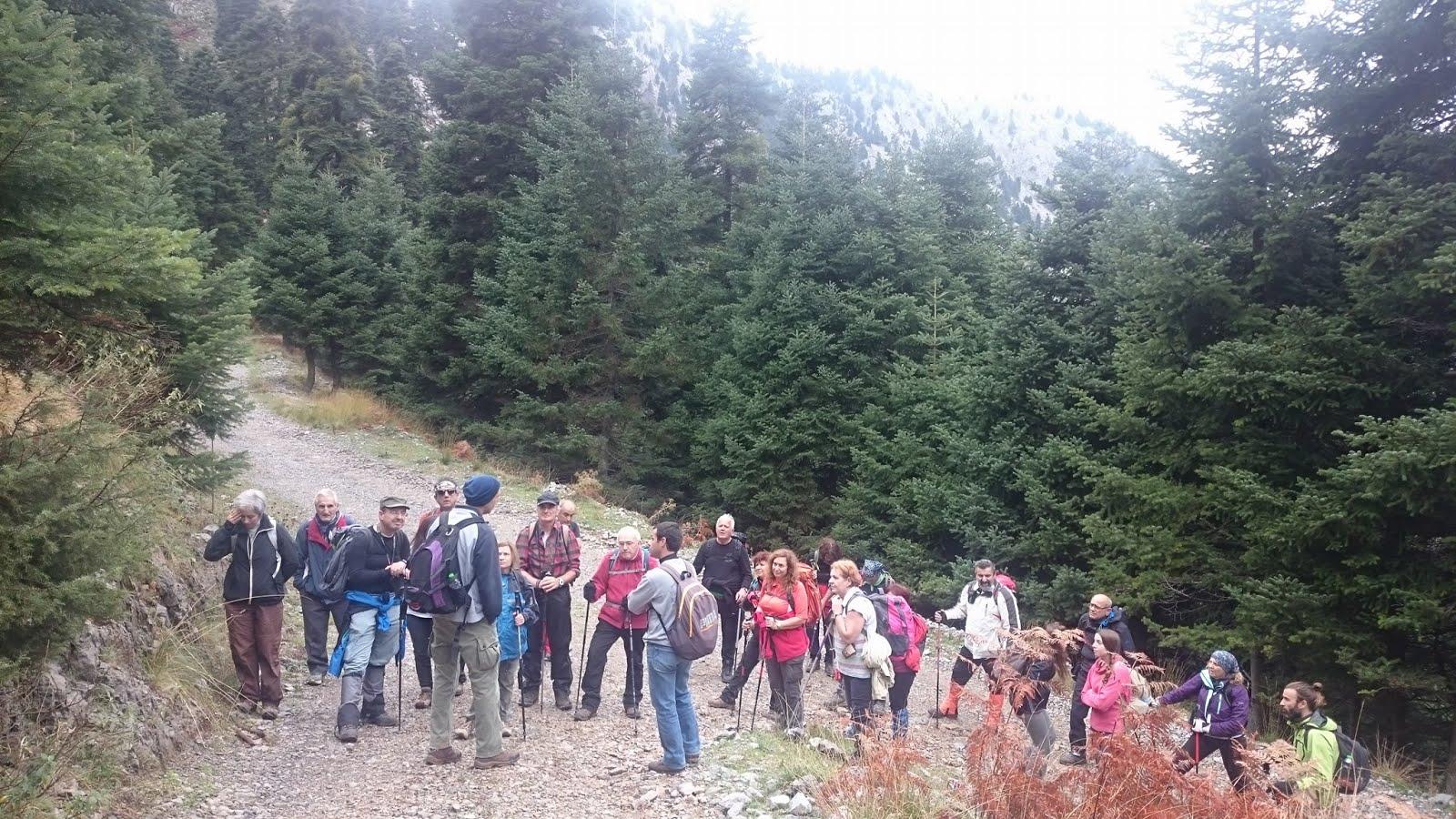 Ημέρες ορειβασίας