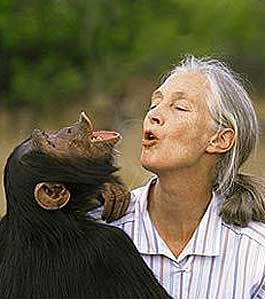 by jane goodall