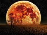 Secreto en la Luna
