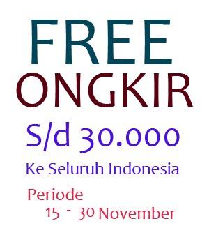 Free Ongkir November