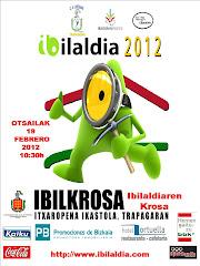IBILKROSA 2012