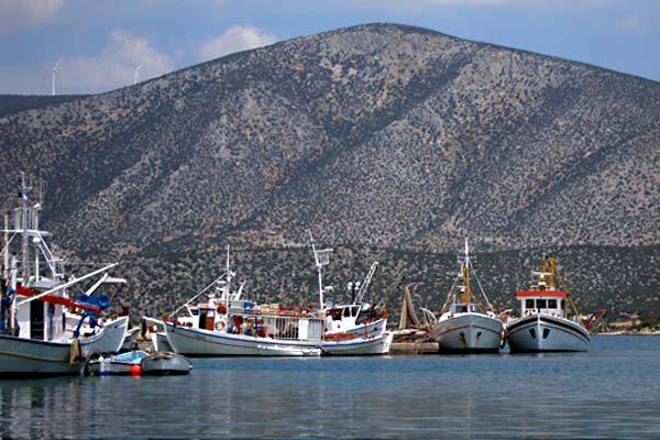 Γεννιέται ο αλιευτικός τουρισμός