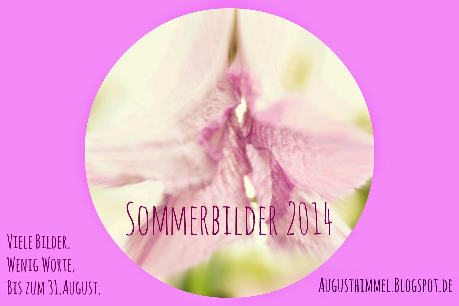 Sommerbilder 2014