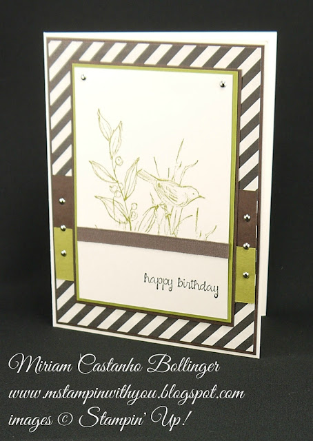 Miriam Castanho-Bollinger, #mstampinwithyou, stampin up, demonstrator, sssc, birthday card, masculine card, typeset specialty DSP, simply sketched, and many more stamp set, su