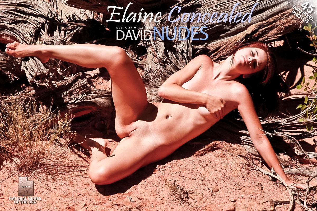Elaine_Concealed David-Nudes02 Elaine - Concealed 11250