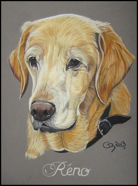 Portrait de labrador (pastels)