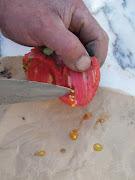 Aproveitar semente de tomate coração de boi