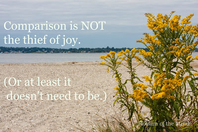 Comparison is not the thief of joy - Flotsam of the Mind