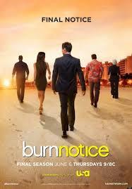 BURN NOTICE 6X11