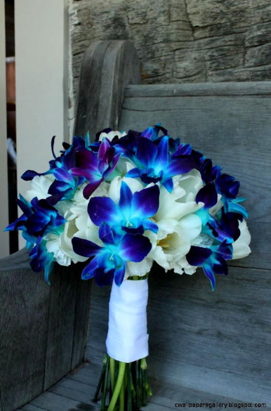 Blue orchids  White tulips  One Day  Pinterest