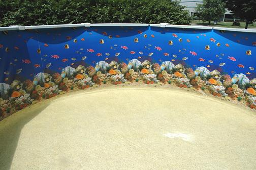 of swimming pools and more how to clean above ground pool
