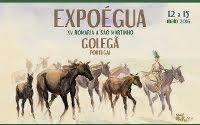 Golegã- ExpoÉgua 2016- 12 a 15 Maio