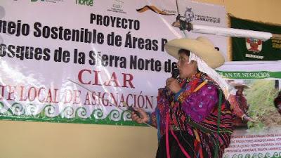 Comunera de Laquipampa expone plan sobre producción, tecnificación y comercialización de aguaymanto