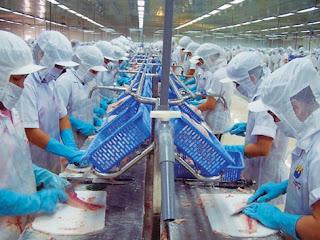 Tuyển nữ đi lao động tại Nhật Bản chế biến thủy sản