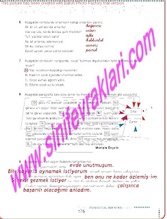 6.Sinif  Turkce Doku Yayinlari Ogrenci Calisma Kitabi Sayfa 175