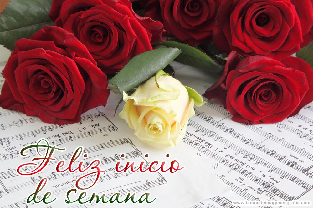 Resultado de imagen de feliz inicio de semana con rosas