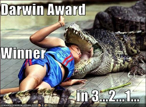 woman+w-gator-DarwinAward_PHoto-bigAPE+o