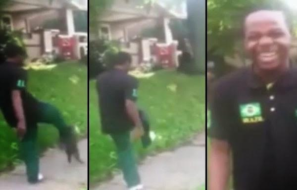 �Se repite la historia! Arrestan a joven por patear brutalmente a gato (v�deo)
