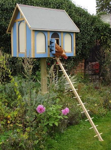 Building A Small Hen House