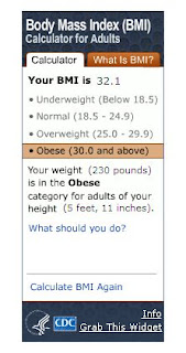 BMI Results For An Adult