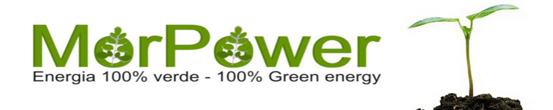 MorPower - Moringa oleifera