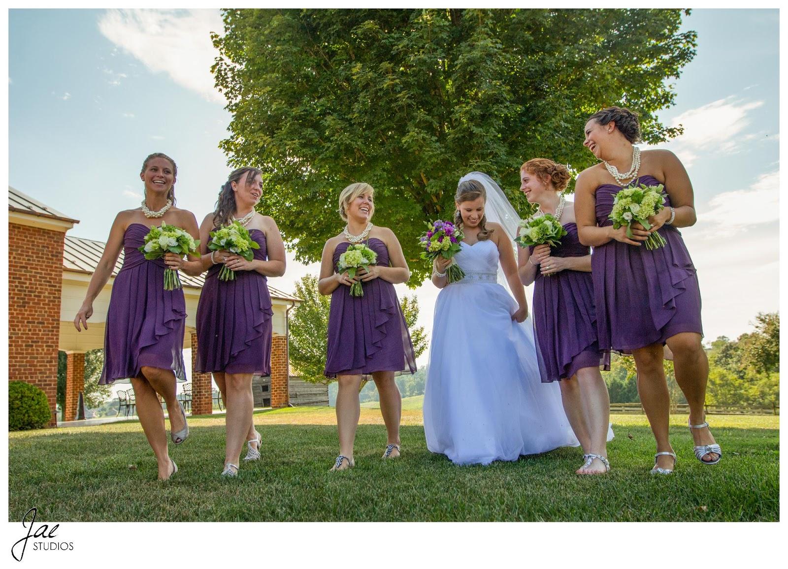 Jonathan and Julie, Bird cage, West Manor Estate, Wedding, Lynchburg, Virginia, Jae Studios, purple, wedding dress, bridesmaids, veil, flowers, bouquet, walking, pearl, necklaces