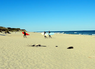 Surfers on Coast Guard Beach in Eastham, MA