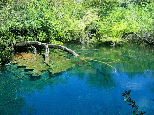 Imag Republica dominicana Paisaje Natural_3
