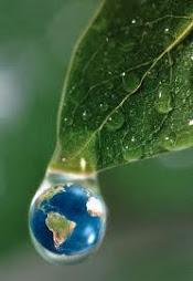A responsabilidade social e a preservação ambiental significam um compromisso com a vida.