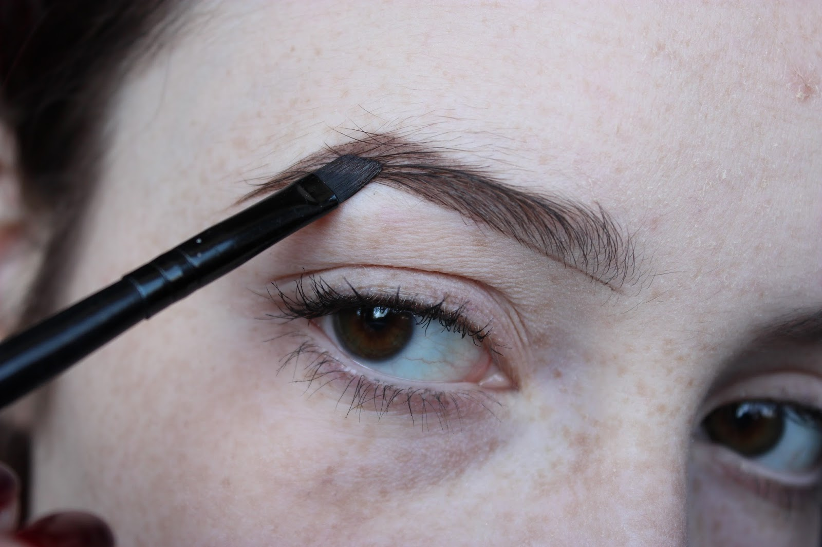 how to grow more eyebrow hair