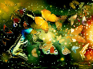 Butterflies desktop backgrounds walls Wallpaper Computer Desktop